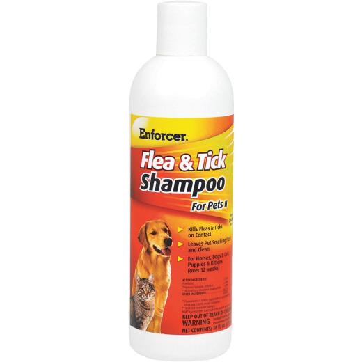Shampoo and Wipes